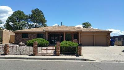 Albuquerque Single Family Home For Sale: 8816 Horacio Place NE
