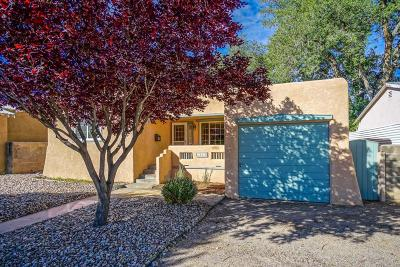 Albuquerque Single Family Home For Sale: 1513 Ridgecrest SE