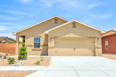 Albuquerque Single Family Home For Sale: 10904 Topacio Street NW