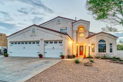 Rio Rancho Single Family Home For Sale: 3121 Ashkirk Loop SE