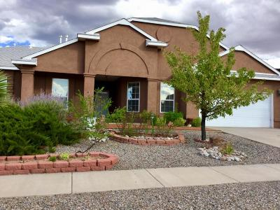 Rio Rancho Single Family Home For Sale: 4620 Bismark Hills Way NE