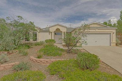 Rio Rancho Single Family Home For Sale: 40 Parkside Road SE
