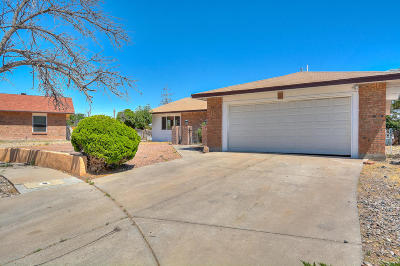 Albuquerque Single Family Home For Sale: 5432 Mariposa Drive NW