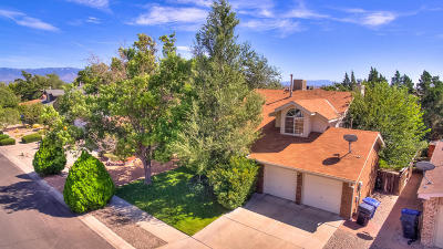 Albuquerque Single Family Home For Sale: 4704 Snapdragon Road NW