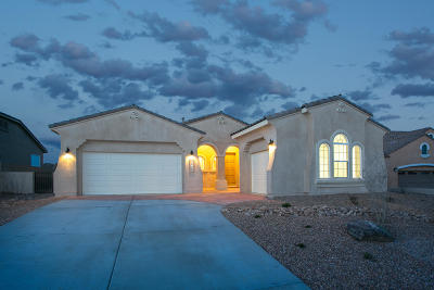 Albuquerque, Rio Rancho Single Family Home For Sale: 2329 Desert View Road NE