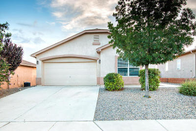 Single Family Home For Sale: 3831 Desert Pinon Drive NE