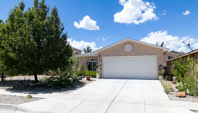 Albuquerque Single Family Home For Sale: 10519 Country Manor Place NW
