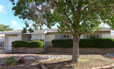 Albuquerque Single Family Home For Sale: 11403 Freeway Place NE