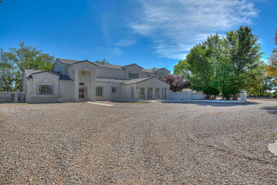 Valencia County Single Family Home For Sale: 27 Chavez Road