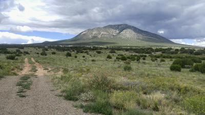Edgewood Residential Lots & Land For Sale: 14 Entranosa Court