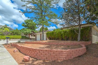 Albuquerque NM Single Family Home For Sale: $237,500