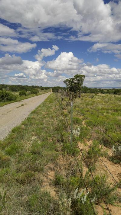 Edgewood Residential Lots & Land For Sale: 32 Entranosa Loop