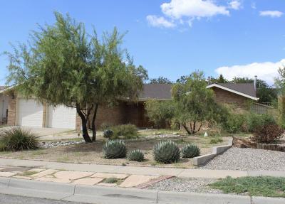 Albuquerque Single Family Home For Sale: 9109 Cascajo Drive NE