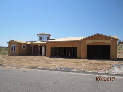 Rio Rancho Single Family Home For Sale: 405 Holt Court NE