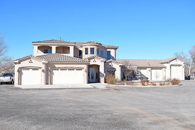 Valencia County Single Family Home For Sale: 909 Tenth Street