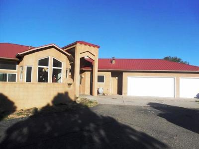 Albuquerque Single Family Home For Sale: 11509 Richfield Avenue NE