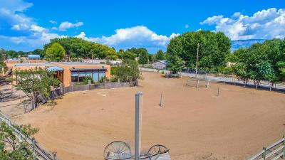 Corrales Single Family Home For Sale: 684 Meadowlark Lane