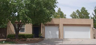 Albuquerque Single Family Home For Sale: 8423 Rancho Ventoso Court NW