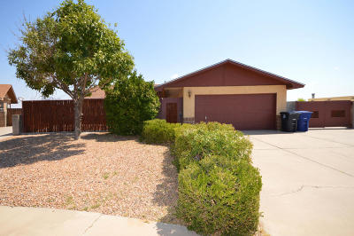Albuquerque Single Family Home For Sale: 4925 Wagon Mound Trail NW