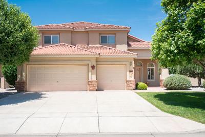 Rio Rancho Single Family Home For Sale: 3517 Newcastle Drive SE