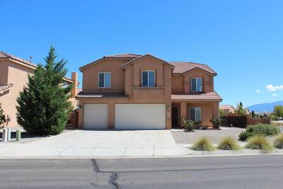 Rio Rancho Single Family Home For Sale: 2500 Camino Seville SE