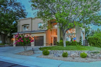 Albuquerque Single Family Home For Sale: 11333 Woodmar Lane NE