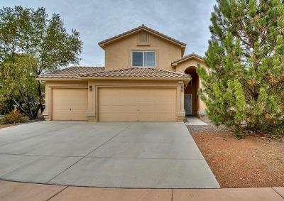 Albuquerque Single Family Home For Sale: 7463 Sidewinder Drive NE