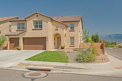 Rio Rancho Single Family Home For Sale: 14 Monte Vista Drive NE