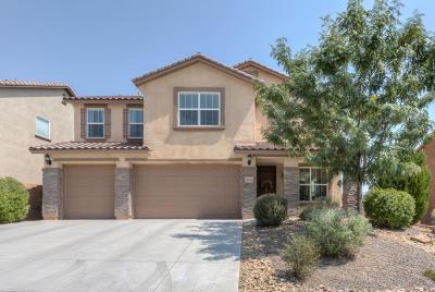 Rio Rancho Single Family Home For Sale: 216 Paseo Vista Loop NE