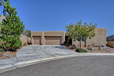 Rio Rancho Single Family Home For Sale: 2505 Vista Manzano Loop NE
