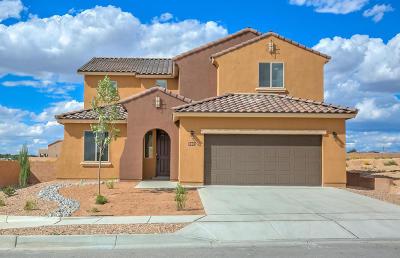 Rio Rancho Single Family Home For Sale: 2801 Bayas Road SE
