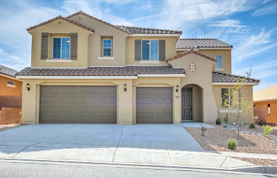 Rio Rancho Single Family Home For Sale: 2716 Bayas Road SE
