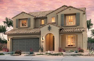 Rio Rancho Single Family Home For Sale: 7103 Overview Road NE