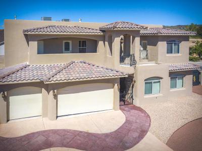 Albuquerque Single Family Home For Sale: 6427 Pojoaque Drive NW