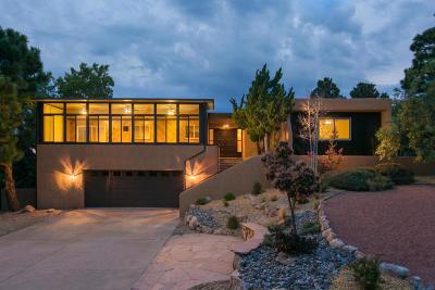 Albuquerque Single Family Home For Sale: 13209 Hidden Valley Road NE