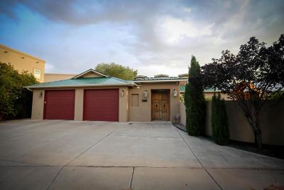 Albuquerque Single Family Home For Sale: 2808 Aloysia Lane NW