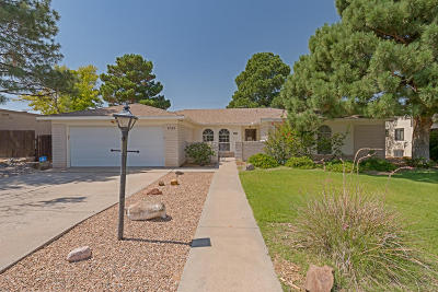 Single Family Home For Sale: 1025 Sagebrush Trail SE
