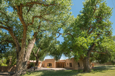 Los Ranchos Single Family Home For Sale: 1022 Acequia Trail NW
