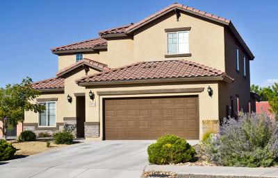 Rio Rancho Single Family Home For Sale: 555 Palo Alto Drive NE