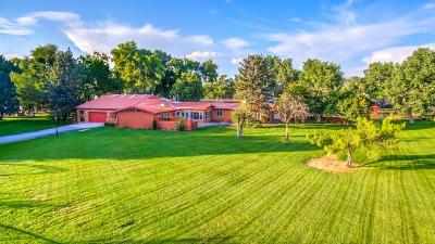 Corrales Single Family Home For Sale: 159 Meadowlark Lane
