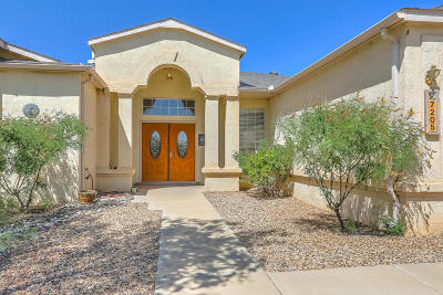 Rio Rancho Single Family Home For Sale: 7205 Spruce Mountain Loop NE