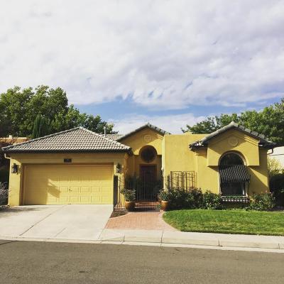Albuquerque Single Family Home For Sale: 11424 Pine Top Lane NE
