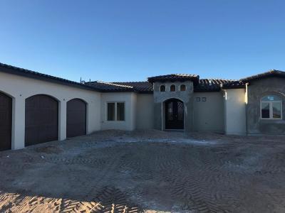 Albuquerque Single Family Home For Sale: 6535 Vista Del Prado Road NW