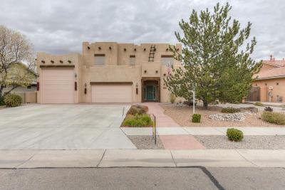 Albuquerque Single Family Home For Sale: 905 Bosque Road NE