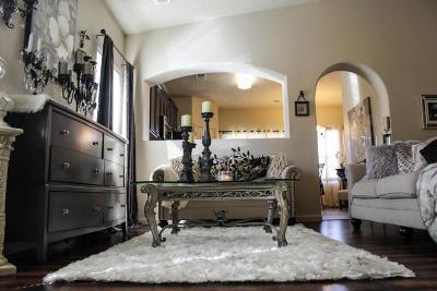 Rio Rancho Single Family Home For Sale: 6549 Mountain Hawk Loop NE