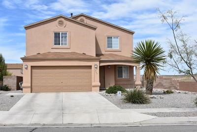 Rio Rancho Single Family Home For Sale: 1845 Chicoma Road NE