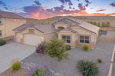 Rio Rancho Single Family Home For Sale: 3806 Cholla Drive NE
