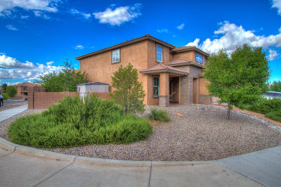 Rio Rancho Single Family Home For Sale: 7100 Fairbanks Drive NE