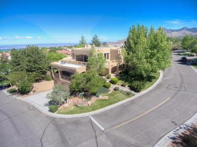 Albuquerque NM Single Family Home For Sale: $525,000
