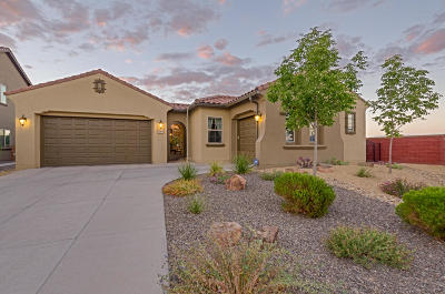 Rio Rancho Single Family Home For Sale: 600 Sierra Verde Way NE